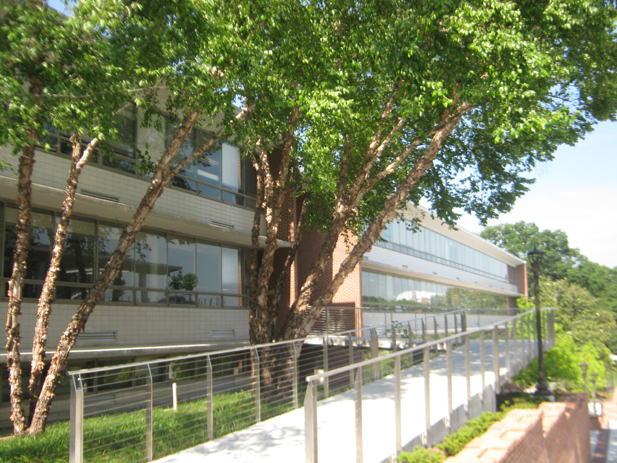 Georgia Institute of Technology, School of Mathematics and School of Industrial Systems and Engineering