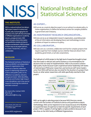 Image of NISS Overview Flyer