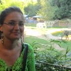 Andreea Erciulescu - NISS Research Associate